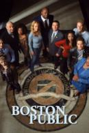 Poster Boston Public