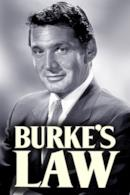 Poster La legge di Burke