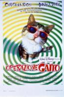 Poster Operazione gatto