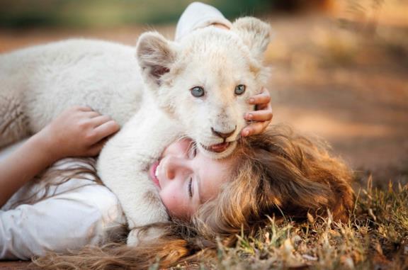 Mia e il leone bianco: la storia dietro la realizzazione del film di Gilles de Maistre
