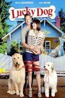 Poster Lucky - Il cane fortunato