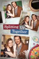 Poster Splitting Up Together