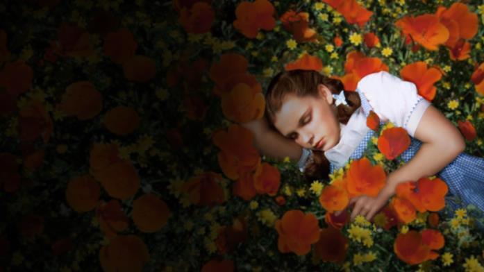 Dorothy in una scena de Il mago di Oz