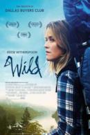 Poster Wild