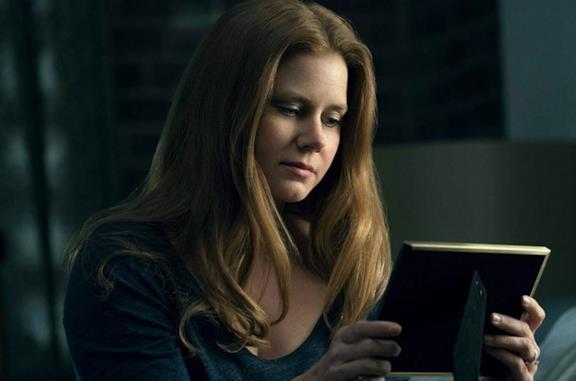 La donna alla finestra: cosa sappiamo del thriller su Netflix con Amy Adams, Anthony Mackie e Gary Oldman
