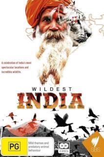 Poster Wildest India