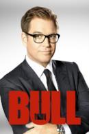 Poster Bull