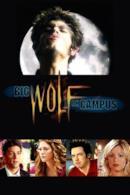 Poster Un lupo mannaro americano a scuola
