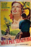 Poster Non c'è pace tra gli ulivi