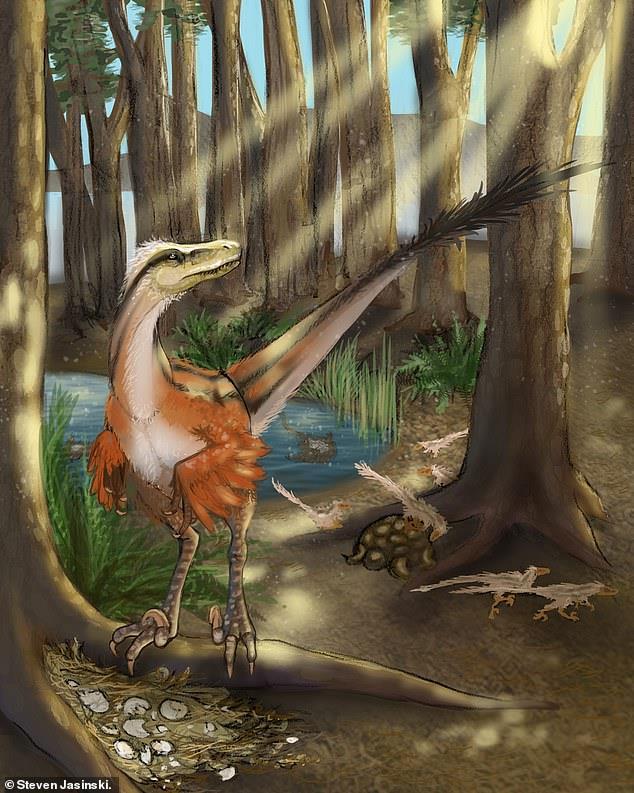 Una ricostruzione del Dineobellator notohesperus
