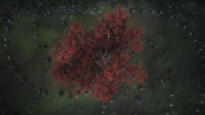 GoT 6: l'albero diga dove nasce il Re della Notte in una visione di Bran