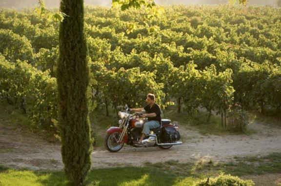Un'ottima annata - A Good Year, le frasi più famose dal film con Russell Crowe