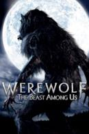 Poster Werewolf - La bestia è tornata