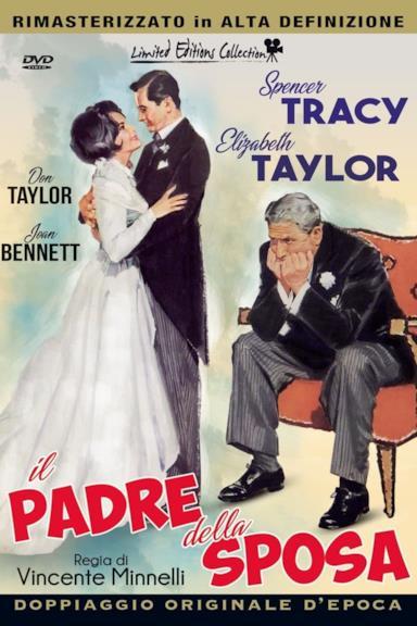 Poster Il padre della sposa