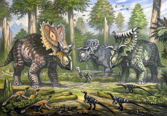 Un gruppo di Nasutoceratops, disegnato