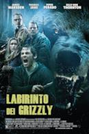 Poster Labirinto dei Grizzly