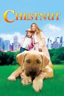 Poster Chestnut - L'eroe di Central Park
