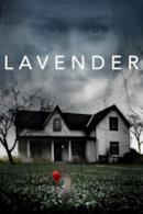 Poster Lavender