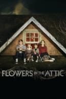 Poster Flowers in the Attic