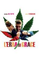 Poster L'erba di Grace