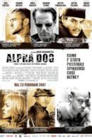 Poster Alpha dog