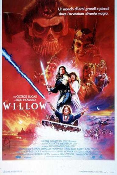 Poster Willow