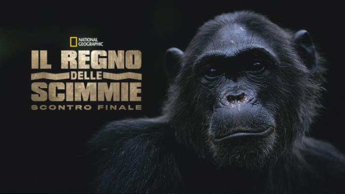 Il regno delle scimmie scontro finale