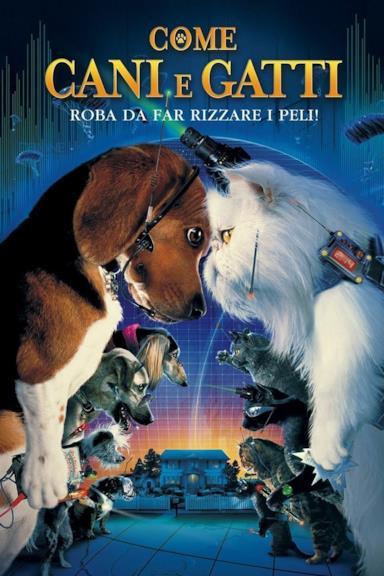 Poster Come cani e gatti