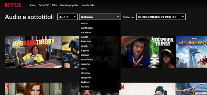 Interfaccia web per ricerca di audio e sottotitoli su Netflix