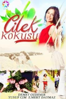 Poster Çilek Kokusu