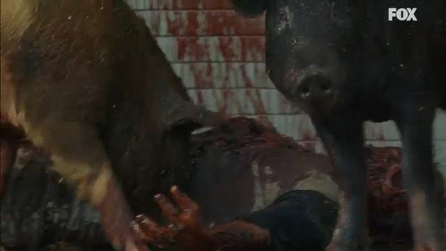 Cinghiali zombie in The Walking Dead 7