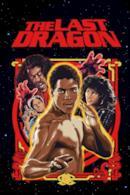 Poster L'ultimo drago