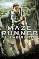 Poster Maze Runner - Il labirinto