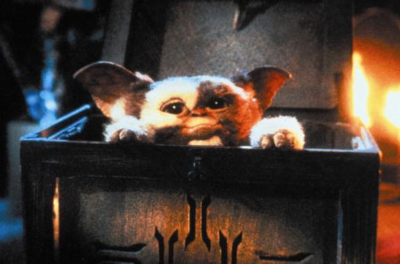 Che creature sono i Gremlins? Da Gizmo a Ciuffo Bianco, le curiosità sui protagonisti della saga