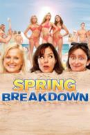 Poster Spring Breakdown