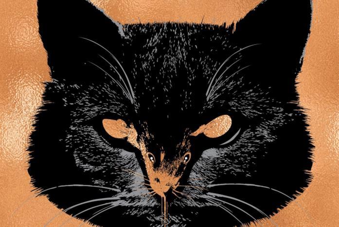 Il gatto della cover del libro di King