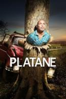 Poster Platane