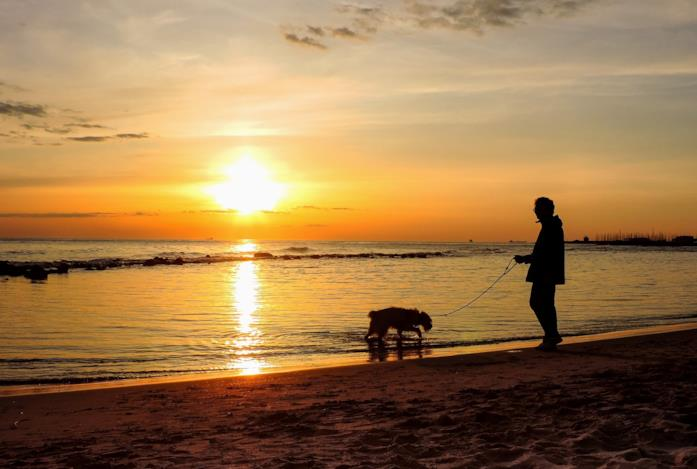 Padrone e cane a passeggio lungo il Lido di Ostia