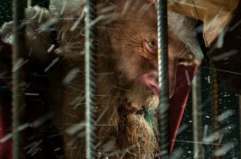 Il terrificante Babbo Natale di Trasporto Eccezionale