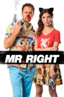 Poster Mr. Right