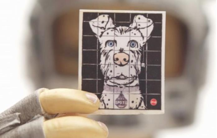 Una foto del cane di Atari
