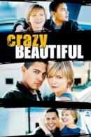 Poster Crazy/Beautiful
