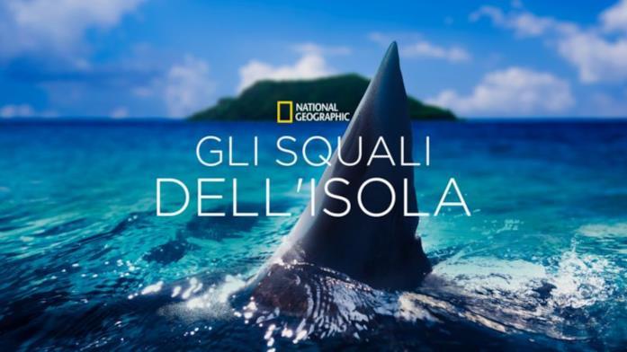 Gli squali dell'isola perduta