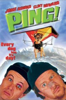 Poster Ping!