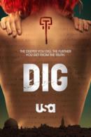 Poster Dig