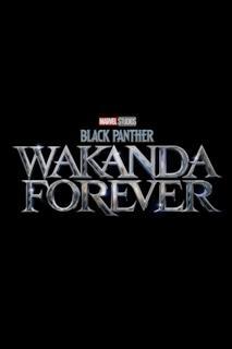 Poster Black Panther: Wakanda Forever