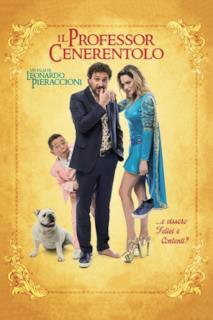 Poster Il professor Cenerentolo