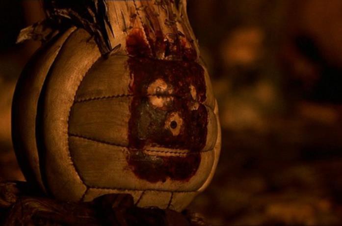 Wilson in Cast Away