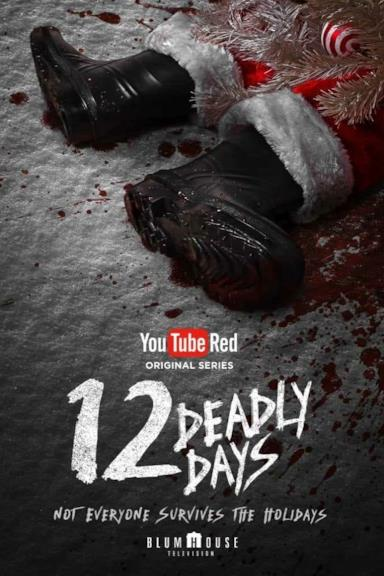 Poster 12 Deadly Days