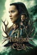 Poster Tenebre e ossa